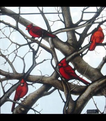 Cardinal Window: image 2